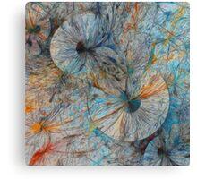 Explosionisms Canvas Print