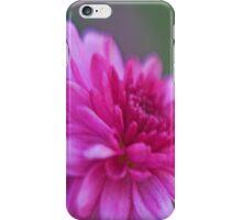 carnation case iPhone Case/Skin