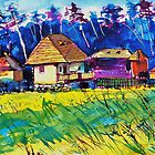Transylvanian farm by ivDAnu