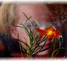 Through The Looking Glass by Loree McComb