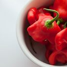 Red hot chilli peppers in a cup by Patrizia  Corriero