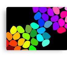 Coloured Pebbles Canvas Print
