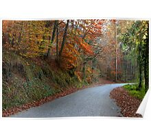 Country Road in the woods  Poster