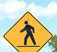 Pedestrian Crosswalk Sign by rhamm