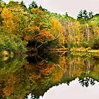 Placid Pond by Joe Jennelle