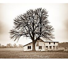 Block Barn Photographic Print