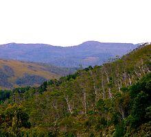 West Coast, Tasmania - artist's paradise! by wearehouse