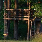 Tree Fort and Swing by stopal