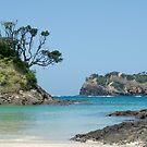 Matapouri Beach, New Zealand by yurix