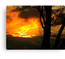 The Beauty of Shadow and Light Canvas Print