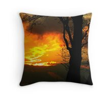 The Beauty of Shadow and Light Throw Pillow
