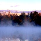 Foggy Pond by Denise Bulone