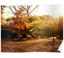 Light Through Autumn Trees - Central Park Poster