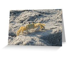 Ghost Crab Greeting Card