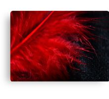 Red Feather Macro Canvas Print