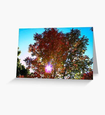 Autumn levity Greeting Card