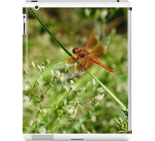 Red Dragon Fly iPad Case/Skin
