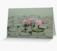 Delicate Water Ballet in the Early Morning Greeting Card