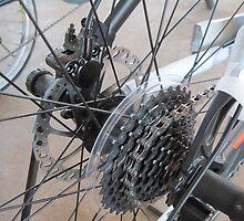 9 Speed Freewheel by Hugh Fathers