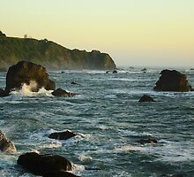 Sunsetting on Patrick's Point by Erica & Mike Herman
