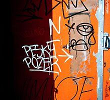 Pesky Pozer-4 by ScaredylionFoto