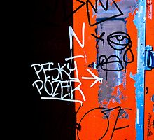 Pesky Pozer-2 by ScaredylionFoto
