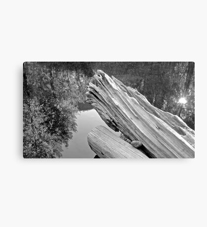 Skykomish River, Washington State Metal Print