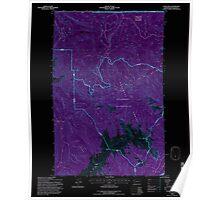 USGS Topo Map Washington State WA Tyler Peak 244404 1995 24000 Inverted Poster