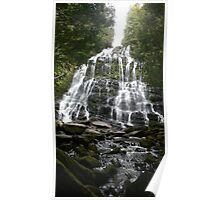 Nelsons Falls Poster