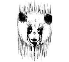 Creepy Panda Photographic Print