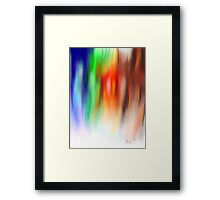 Coloured Feathers Framed Print