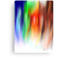 Coloured Feathers Canvas Print