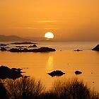 Pure gold - Kenmare, Ireland by Orla Flanagan