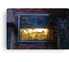A Light Behind The Overgrown Walls Canvas Print