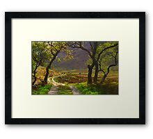 Arch of Trees Framed Print