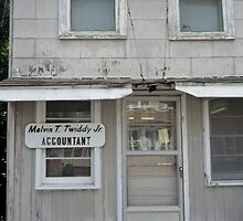 Accountant at Large by Jessica Michele