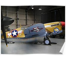 Curtiss P-40 Poster