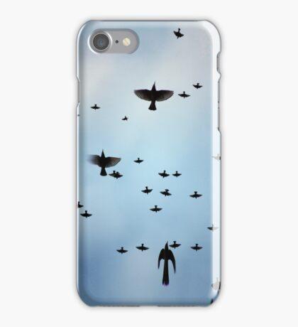 Flying Birdies iPhonecase 04 iPhone Case/Skin