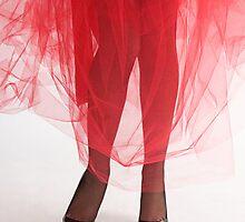 Glamour legs 14 by fotorobs