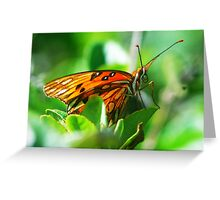 Butterfly face Greeting Card