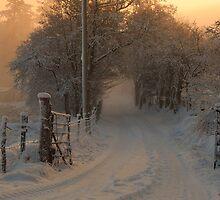Near Glendowan in Donegal by raymcdermott