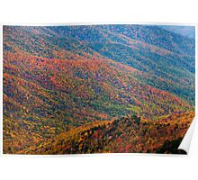 Nature's Canvas - Great Smoky Mountains National Park, TN Poster