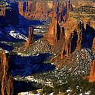 Birds Eye over the Navajo Canyonlands by Eric  Neitzel