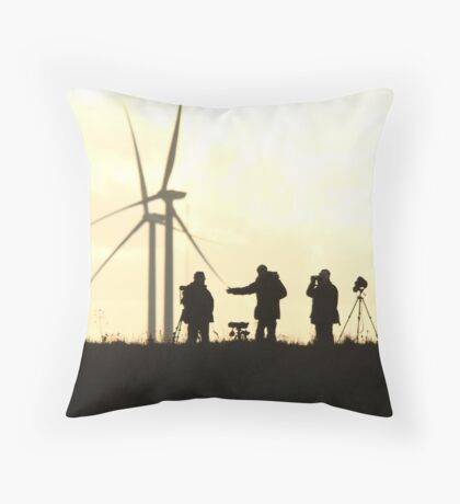 Waiting Birders Throw Pillow
