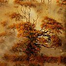 estampe tree case by Sonia de Macedo-Stewart