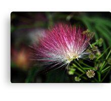 Deep Pink Flower Canvas Print