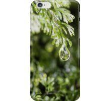 Dew Drop iPhone Case/Skin