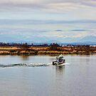 Sunday Afternoon on the Fraser River by Brenda Boisvert