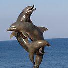 Dolphins - Delfinas, Puerto Vallarta, Mexico by PtoVallartaMex
