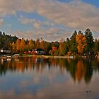 Lake Stevens End of Fall by Steve Walser
